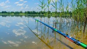 Pêche d'été sur le lac de forêt Photo libre de droits