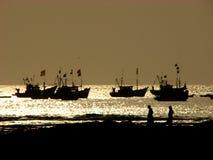Pêche d'or images libres de droits
