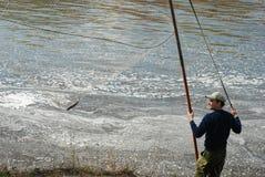Pêche d'homme en rivière de tourbillonnement Perche attrapée Image libre de droits