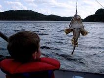 Pêche dans le bateau image stock