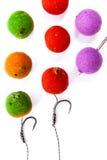 Pêche de carpe Différent des boilies et des accessoires de carpe pour la carpe Image libre de droits