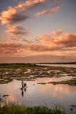 Pêche de coucher du soleil Image stock