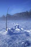 Pêche de glace Photographie stock libre de droits
