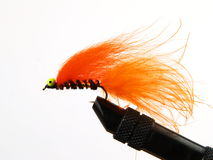 Pêche de la mouche Image stock