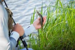 Pêche de la rotation sur une belle rivière Photos stock