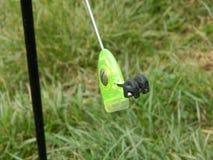 Pêche de la vitesse fluorescente Image stock