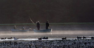 Pêche de mouche Photo libre de droits
