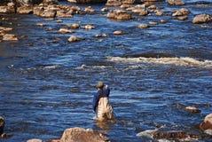 Pêche de mouche d'homme Photographie stock libre de droits