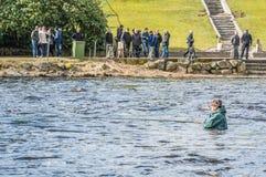 Pêche de mouche dans les eaux calmes Image stock