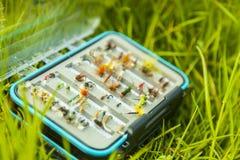 Pêche de mouche dans les eaux calmes Images libres de droits
