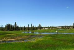 Pêche de mouche dans Yellowstone Photographie stock