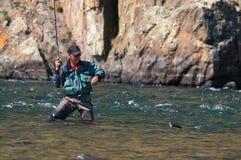 Pêche de mouche en Mongolie - poisson de grayling Image libre de droits