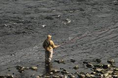 Pêche de mouche Perth Ecosse R-U Images stock