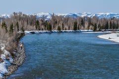 Pêche de mouche sur la rivière Snake Photos stock