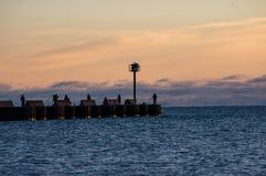 Pêche de pilier de début de la matinée Photo libre de droits