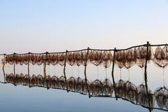 Pêche des trappes au coucher du soleil Photographie stock libre de droits