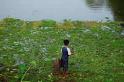 Pêche en Asie Image libre de droits