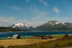 Pêche et agriculture dans Lofoten Images stock