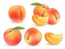 Pêche Fruit doux ensemble du vecteur 3d Illustration réaliste d'isolement Images stock