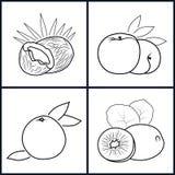 Pêche, kiwi, noix de coco, pamplemousse illustration libre de droits