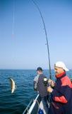 Pêche maritime. Photos libres de droits
