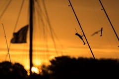 Pêche pendant le matin et crochets dans l'avant Image stock