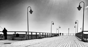 pêche Regard artistique en noir et blanc Photos libres de droits