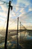 Pêche saumonée de gord écossais Image libre de droits