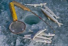 Pêche sur la glace 4 Photos stock
