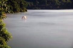 Pêche sur le lac Dongjiang photo stock