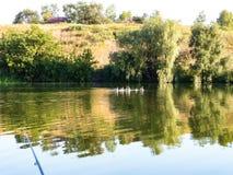Pêche sur le rivage d'un étang avec les cannes à pêche Photo libre de droits