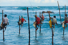 Pêche traditionnelle du Sri Lanka de pêcheurs d'échasse photos stock