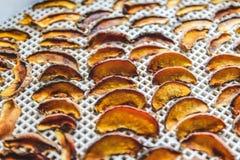 Pêches sèches dans un dessiccateur de déshydrateur Une manière de préserver des vitamines photo libre de droits