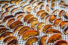Pêches sèches dans un dessiccateur de déshydrateur Une manière de préserver des vitamines image stock