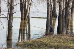 Le pêcheur Photo stock
