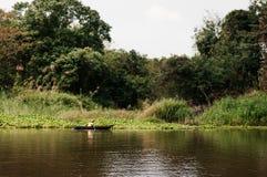 Pêcheur asiatique sur le bateau en bois de longtail en rivière de nature Photographie stock