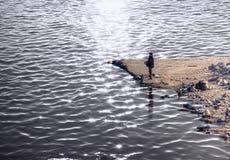 Pêcheur au coucher du soleil Photos libres de droits