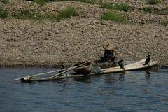 Pêcheur avec des cormorans Photo libre de droits