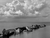 Pêcheur B&W de Tampa Bay photographie stock