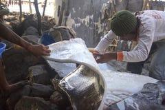 Pêcheur coupant de grands poissons (Lamalera, l'Indonésie) Image libre de droits