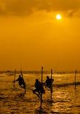 Pêcheur d'échasse Photo libre de droits