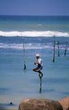Pêcheur d'échasse Image libre de droits
