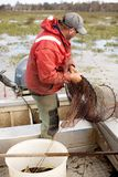 Pêcheur d'anguille Images libres de droits