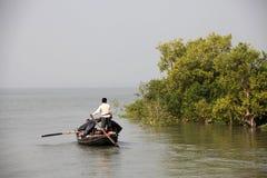 Pêcheur dans le Sundarbans, Inde photo libre de droits