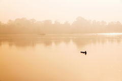 Pêcheur dans un bateau sur une rivière Image stock
