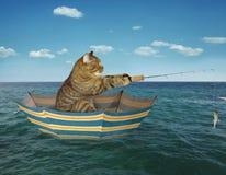 Pêcheur de chat sur le parapluie photos libres de droits