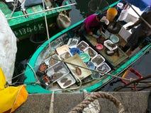 Pêcheur de fruits de mer Photo stock