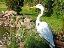 Pêcheur de roi à côté d'étang de jardin Photographie stock