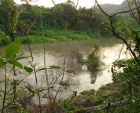 Pêcheur et bateau en rivière de Pasak photographie stock libre de droits