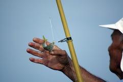 Pêcheur et poissons Photographie stock libre de droits